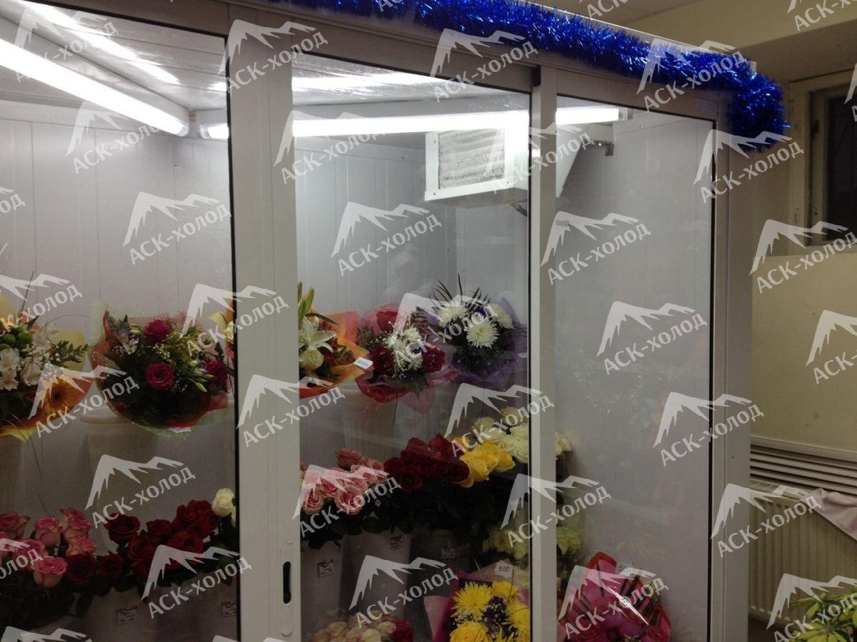 Фото холодильной камеры для цветов